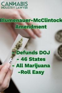 Blumenauer-McClintock details