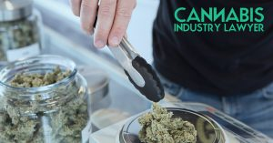 Solicitude do Dispensario de Cannabis de Illinois
