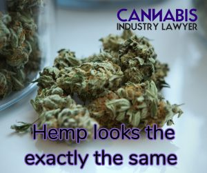 Illinois Hemp License Application - Cannabis Business Attorney - Tom
