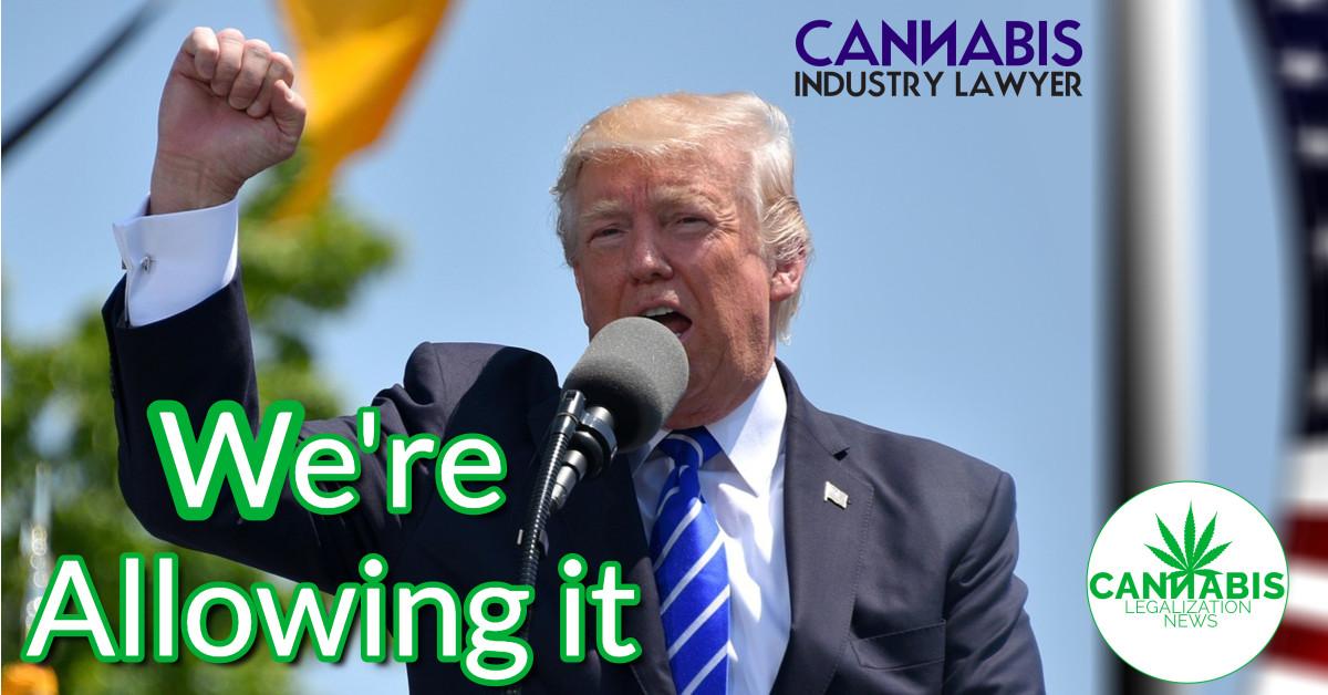 Трамп дазваляе дзяржавам легалізаваць гэта