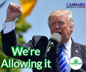 Trump Allowing States to Legalize it