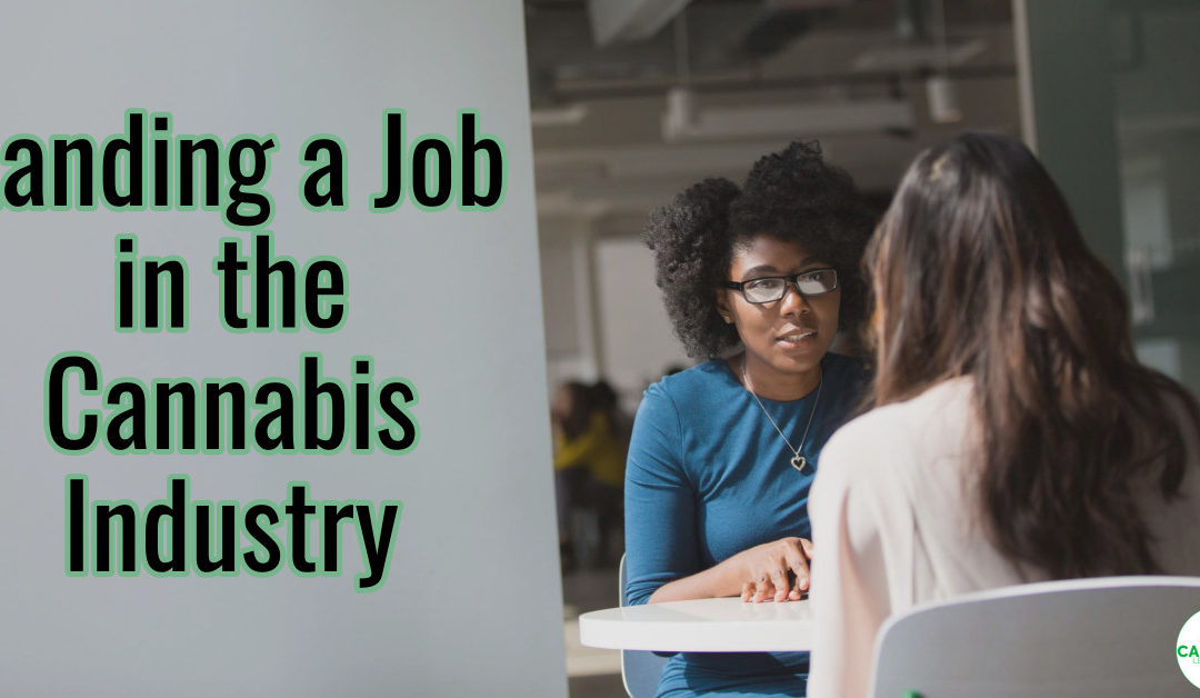 Getting a Job in the Cannabis Industry