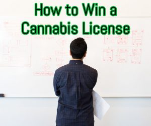 How to Win a Cannabis License with Canna Advisors