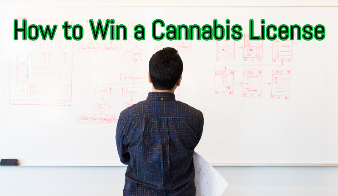 How to Win a Cannabis License