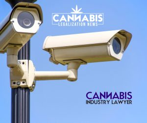 cannabis security plans