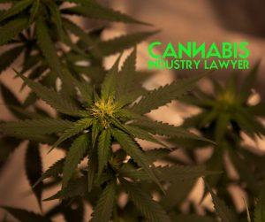 Departamento de Agricultura de Illinois QA 1 Licencia de Cannabis