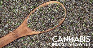 mercar sementes de cannabis legalmente en liña