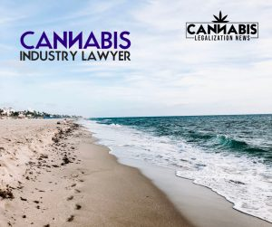 Florida Cannabis Lawyer