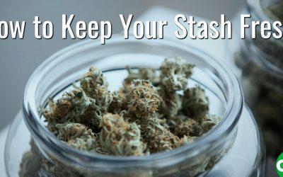 How to Keep Your Stash Fresh