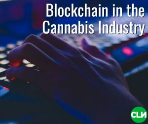 Blockchain for Cannabis Parsl (1)