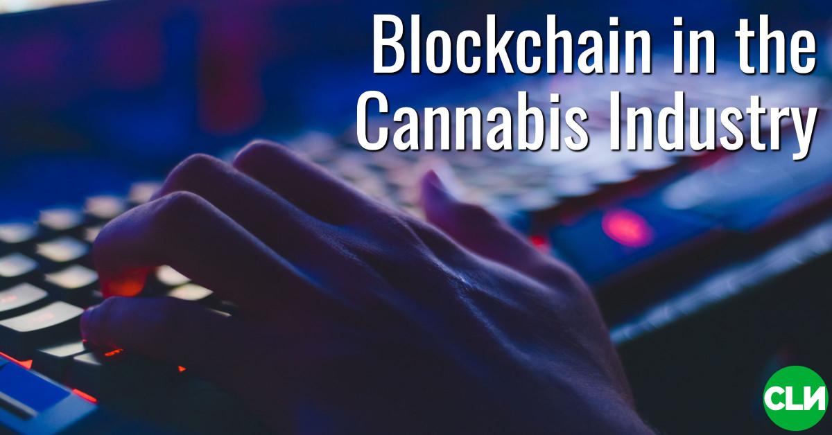 Blockchain для канабіса Parsl