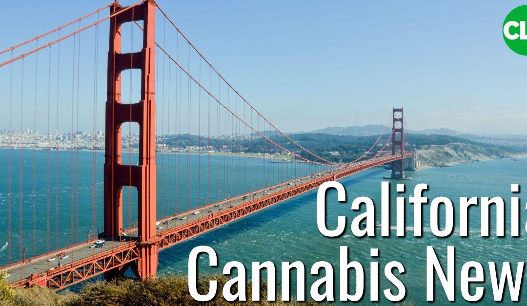 California Cannabis Lawyer