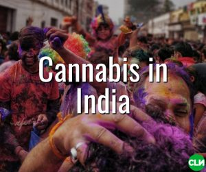 Is Cannabis Legal in India Great Legalisation Movement