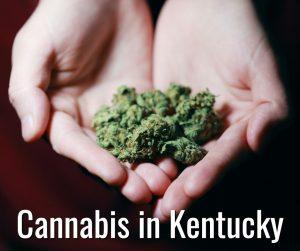 Kentucky Cannabis Lawyer Suhre Associates