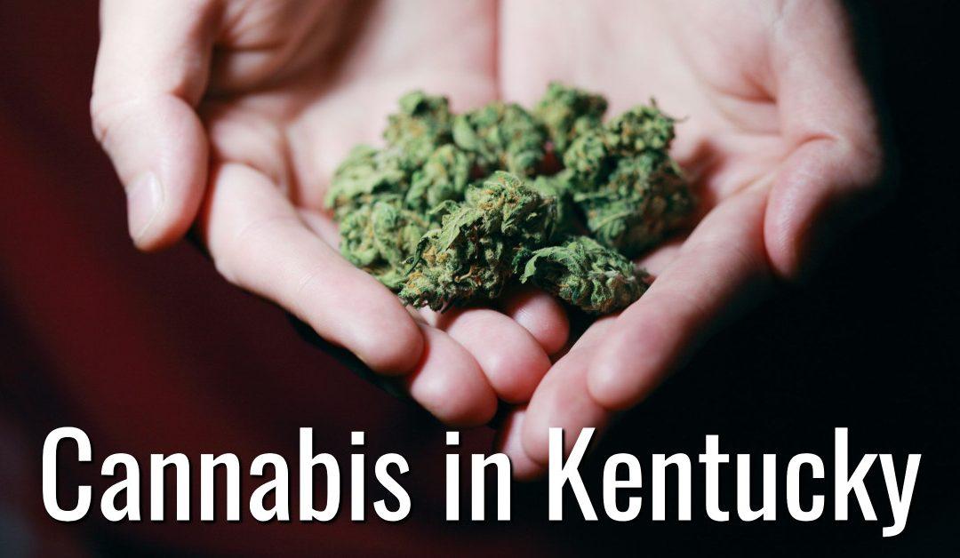 Kentucky Cannabis Lawyer