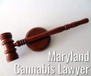 Maryland Cannabis Lawyer Kinner McGowan