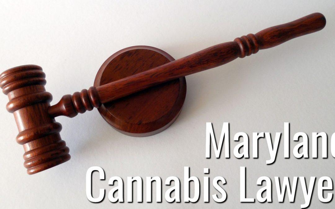 Maryland Cannabis Lawyer