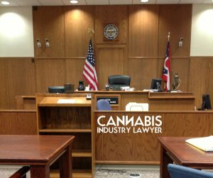 how to sue for a cannabis license