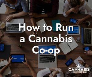 How to Run a Cannabis Co-op Chicago Cannabis Company