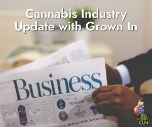 Cannabis Industry Update gegroei