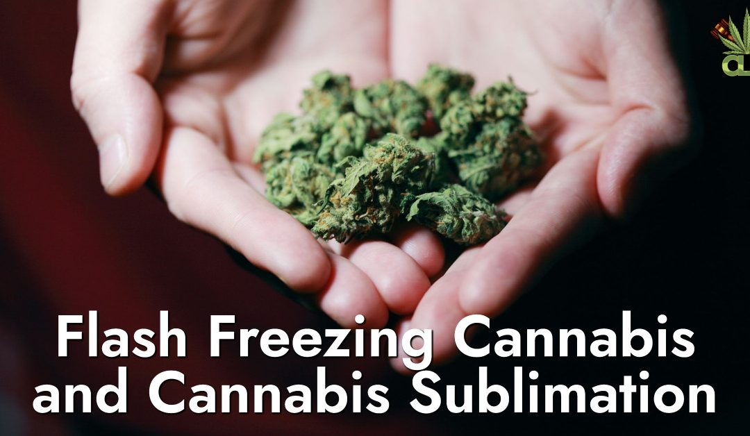 Flash Freezing Cannabis ug Cannabis Sublimation