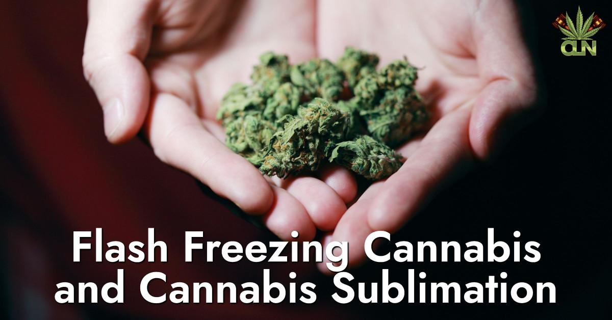 Flash Freezing Cannabis and Cannabis Sublimation