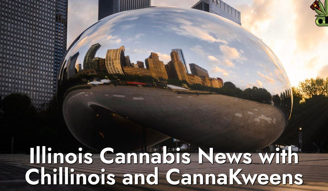 Illinois Cannabis News- ը Chillinois- ի և CannaKweens- ի հետ