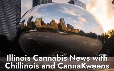 Cannabis News a Illinois amb Chillinois i CannaKweens