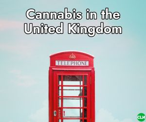 Is Cannabis Legal in the UK