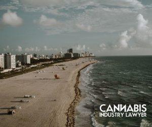Florida weed laws