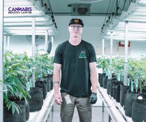 Can you grow marijuana in michigan