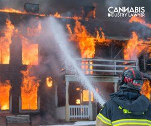 Cannabis And Hemp Industry Insurance