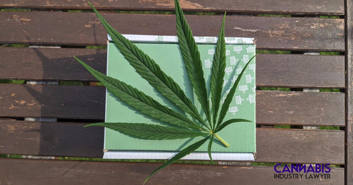 puedes cultivar marihuana en michigan