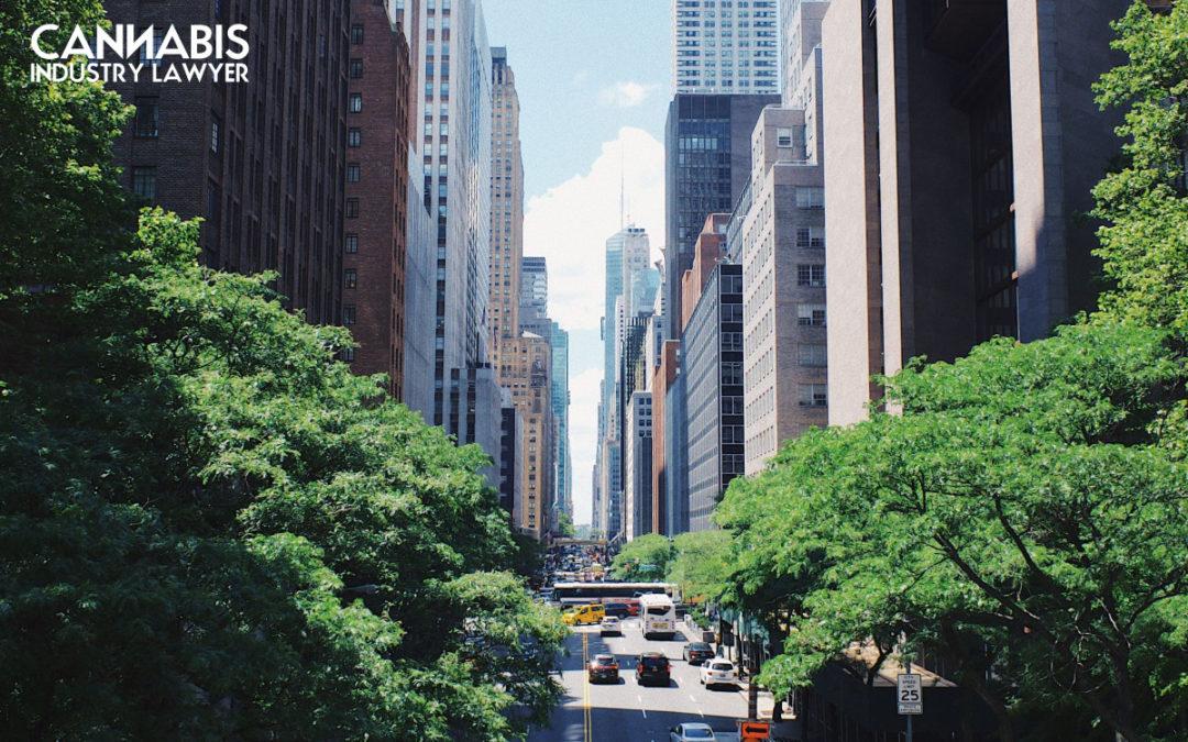 Raihana Mahi Maamaa o New York