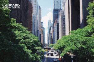 Lisansa momba ny fambolena marijuana any New York
