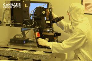Nanotechnology in cannabis