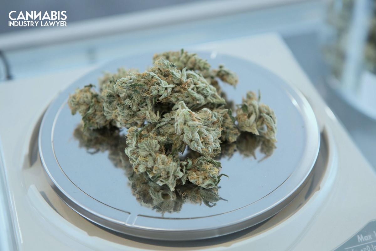 Licencia de mayorista de cannabis de Nueva Jersey