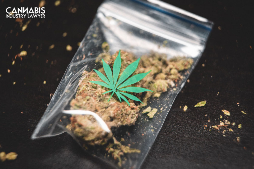 New Jersey Conditional Cannabis License