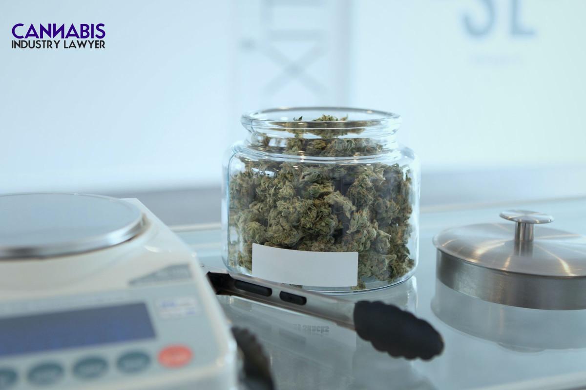 Ohio marijuana dispensary license