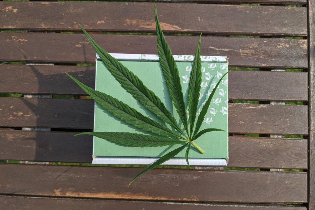Лист марихуани