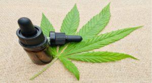 Cannabis -olie -drupper in 'n bottel