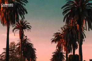Πού μπορώ να πάρω άδεια καλλιέργειας στην Καλιφόρνια